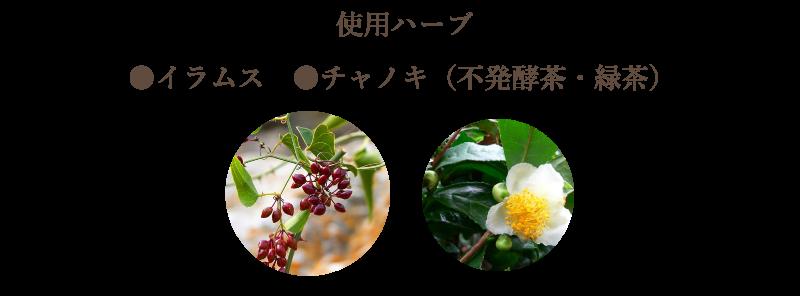 image6-3w